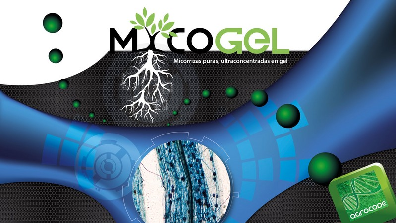 MYCOGEL